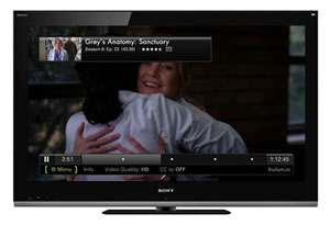 Hulu Launches Hulu Plus v2.02