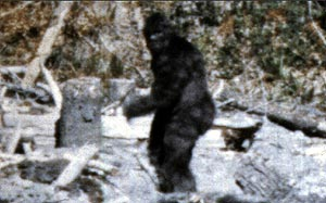 Spike TV and Lloyds Offer Bounty For Bigfoot In New Reality Show