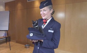 cat_in_a_hat_british_airways