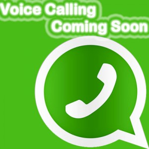 Whatsapp with Voice